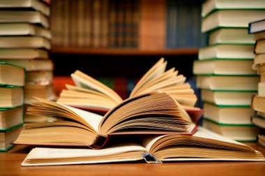expat schooling report