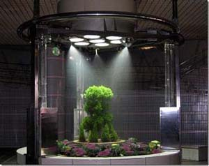 Awesome Another Product Of Japan Is The Plant Found In The Tram Stop Koraku En.  Living In Its Own Chamber With Sun Lights And A Timed Water Spray, This One  Looks ...