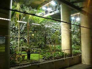... The Vertical Garden Is Found In Taipeiu0027s National Concert Hall And  Measures Eight Metres Tall And Six Metres Wide. The Garden Was Created In  2007 And Is ...