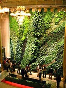 Next We Gaze Upwards In Awe At The Vertical Garden Of Taipei. Created By  The French Artist Patrick Blanc, An Artist Who Also Happens To Be A  Botanist, ...